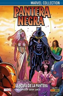 Pantera Negra de Hudlin   2
